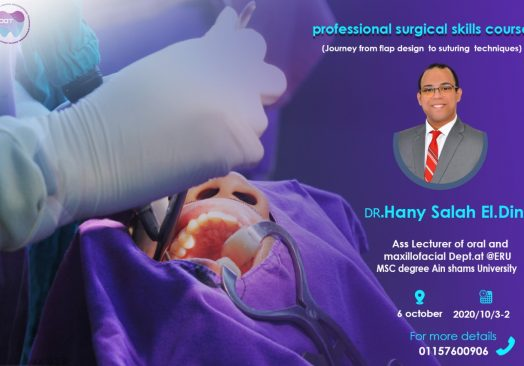 Professional surgical skills course